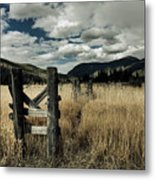 Colorado Mountain Meadow Metal Print