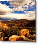 Colorado Mountain Splendor Metal Print