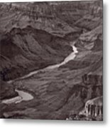 Colorado River At Desert View Grand Canyon Metal Print