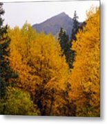Colorado Road Metal Print