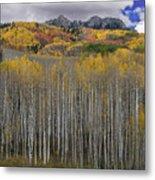 Colorado Splendor Metal Print