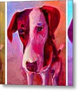 Colored Dog Strip Metal Print