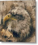 Colored Etching Of American Bald Eagle Metal Print