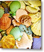 Colored Shells Metal Print