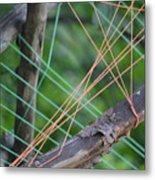 Colored Thread Metal Print