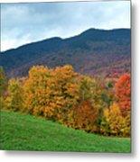 Autumnal Vermont Metal Print
