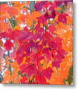 Colorful Autumn Leaves Metal Print