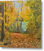 Colorful Autumn Trail Metal Print