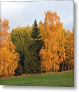 Colorful Autumn - Trees In Autumn Metal Print