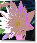 Colorful Beauty Work Number 13 Metal Print