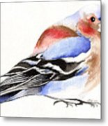 Colorful Chaffinch Metal Print
