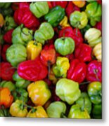 Colorful Chili Pepper Metal Print