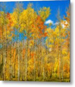 Colorful Colorado Fall Foliage Metal Print