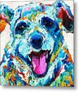 Colorful Dog Art - Smile - By Sharon Cummings Metal Print