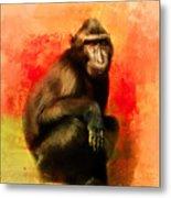 Colorful Expressions Black Monkey Metal Print