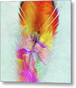 Colorful Feather Art Metal Print