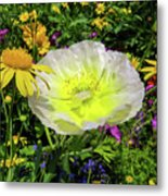 Colorful Garden Metal Print