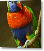 Colorful Lorikeet Metal Print