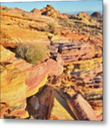 Colorful Morning At Valley Of Fire Metal Print