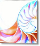 Colorful Nautilus Metal Print