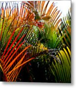 Colorful Palm Leaves Metal Print