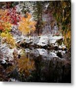 Colorful Pond Metal Print