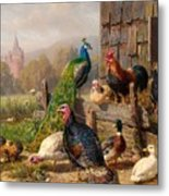 Colorful Poultry Metal Print