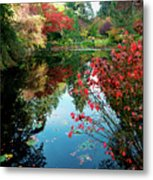 Colorful Reflection In Autumn Gardens. Metal Print
