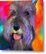 Colorful Schnauzer Dog Portrait Print Metal Print