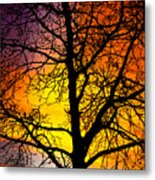 Colorful Silhouette Metal Print