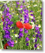Colorful Spring Wild Flowers Metal Print