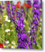 Colorful Wild Flowers Spring Scene Metal Print