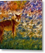 Colorized Death Valley Coyote Metal Print