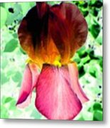 Colormax 3 Metal Print