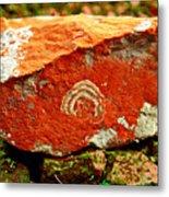 Colors At River Bed Moina Tasmania Metal Print
