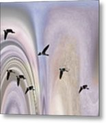 Colors In A Borealis Flyway Metal Print