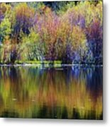 Colors Of Autumn In May Metal Print