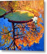 Colors Of Fall On The Lily Pond Metal Print