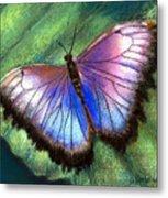 Colors Of Nature - Hunawihr Morpho Metal Print