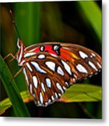 Colors Of Nature - Natures Tapestry Metal Print