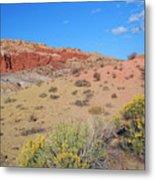 Colors Of The Utah Desert Metal Print