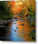 Colors On A Stream Metal Print