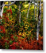 Colors On Mcclure Pass Metal Print
