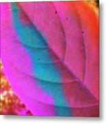 Colour Leaf Metal Print