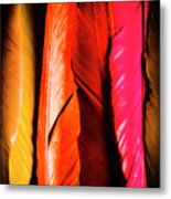 Colourful Feather Art Metal Print