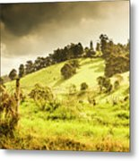 Colourful Fields And Farmyards Metal Print