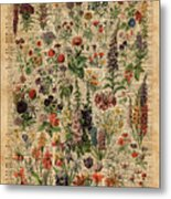 Colourful Meadow Flowers Over Vintage Dictionary Book Page  Metal Print
