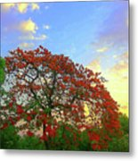 Colours Of Nature Metal Print