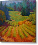 Columbia Valley Vineyard Metal Print