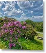 Come To The Craggy Metal Print